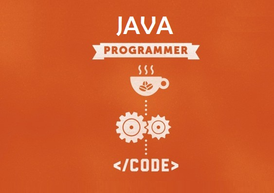 how to become a professional java programmer